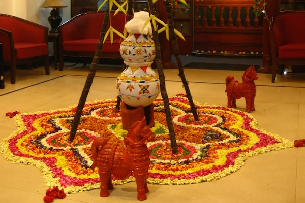 Pongal The Harvest Festival Of India