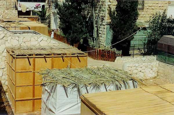 Sukkot (Jewish Festival)