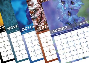 2017 Flower Photo Calendar
