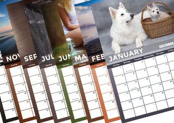 2018 Dog Photo Calendar