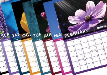 2019 Flower Photo Calendar