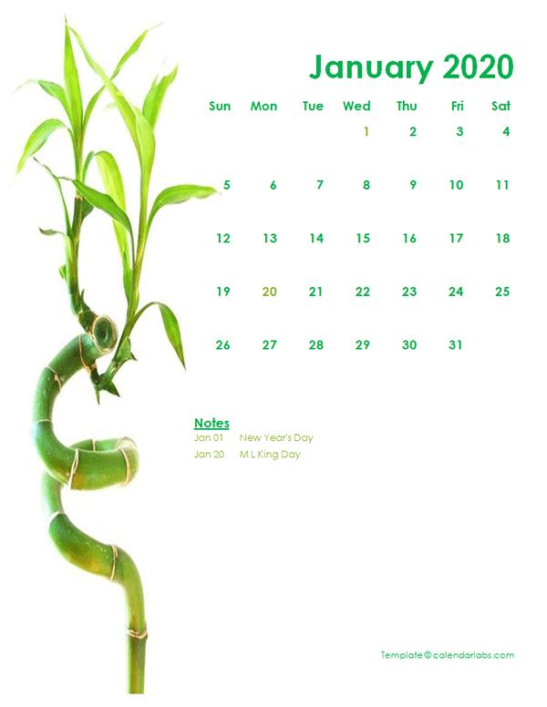 2020 Monthly Calendar Template Green Design