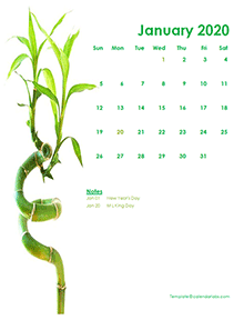 2020 monthly calendar green design template