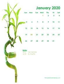 2020 monthly calendar green design template