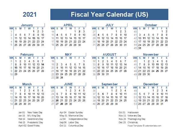 2021 Fiscal Planner USA