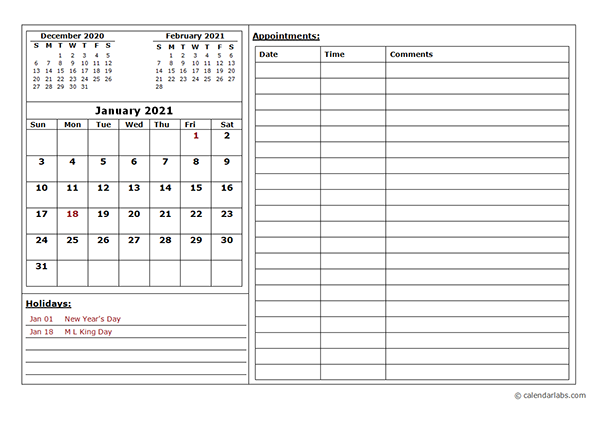 2021 Monthly Appointment Calendar