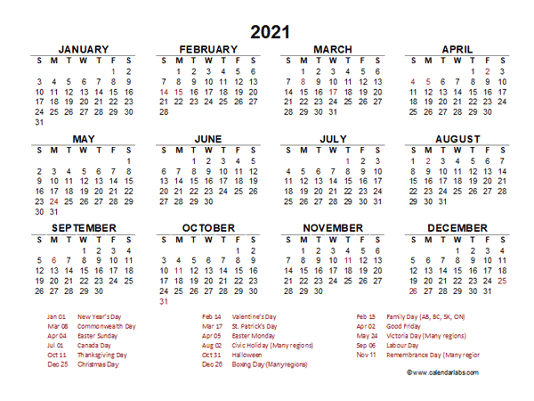 2021 Year at a Glance Calendar with Pakistan Holidays