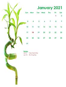 2021 monthly calendar green design template