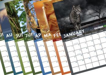 Cat Calendar 2022.2022 Cat Photo Calendar Free Printable Templates